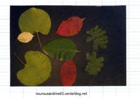 Activit manuelle set de table d 39 automne - Activite manuelle set de table ...