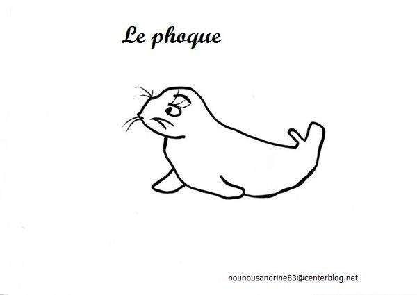 Banquise le phoque coloriage - Coloriage de phoque ...