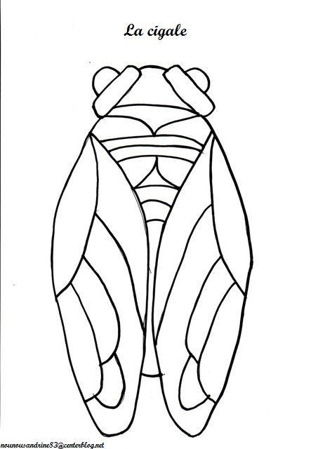 Activit manuelle insectes cigale gabarit - Comment dessiner une fourmi ...