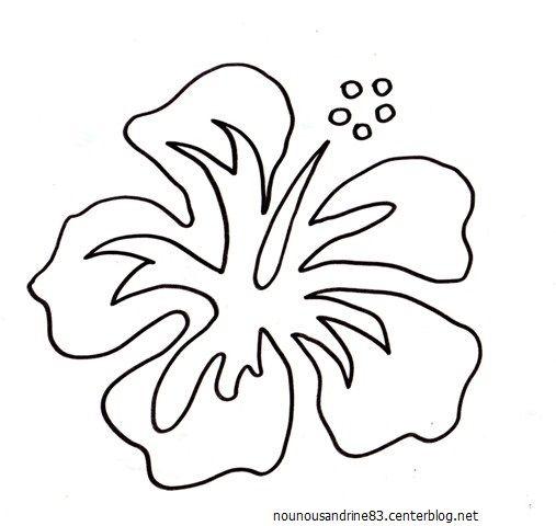 Coloriage fleur hibiscus - Coloriage de fleur ...
